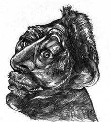 Old Man by PtarmiganMan