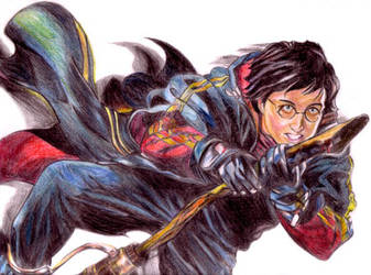 harry flying by blastedgoose