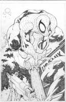 Spidey is back by bobbett