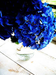 blue. by wisewoman507