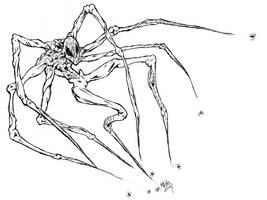 Spiderman by ragzdandelion