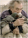 The birds lover by daaram