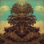 The Tree Called Alistair by daaram