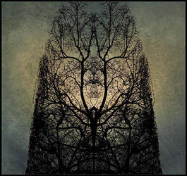 Souls by daaram