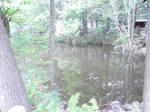 001 - Small lake STOCK by FujiB13