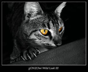 Wild Look 3 by gONZOm