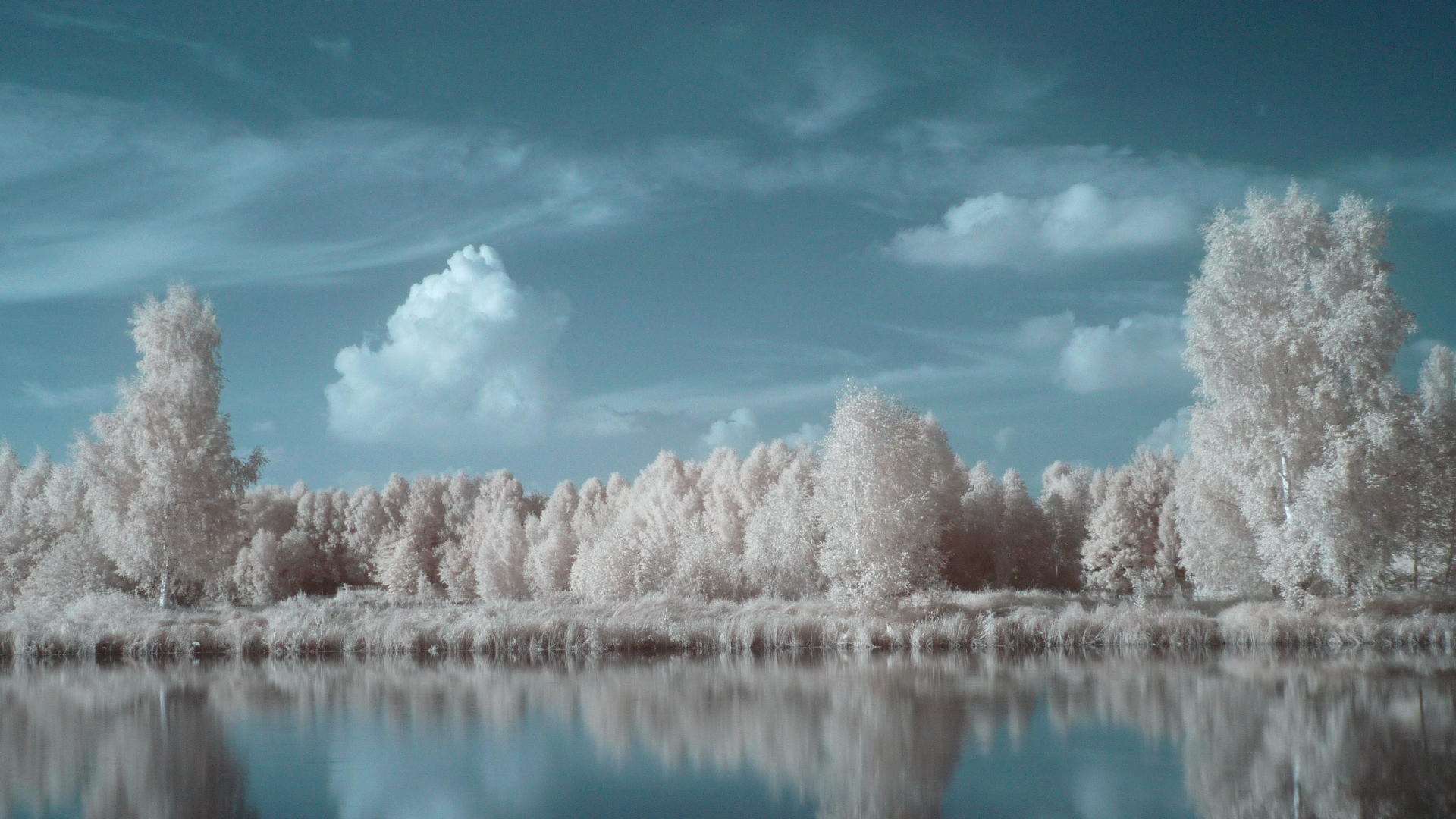 IR landscape 8 by Kopczynski-Adam