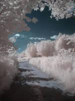 Magic road by Kopczynski-Adam