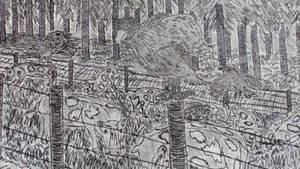 Birds by SergeantQumbula