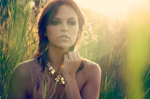 golden summer by Violetessa