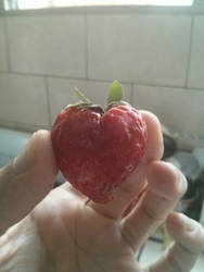 Strawberry Heart by cesars