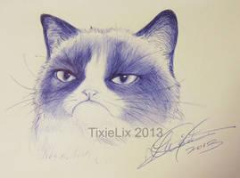 Still sketchy, still grumpy... by TixieLix