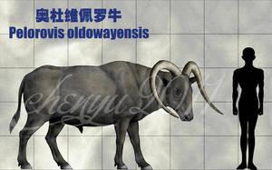 Pelorovis oldowayensis by sinammonite