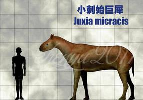 Juxia micracis by sinammonite