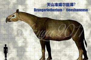 Dzungariotherium?tienshanense by sinammonite