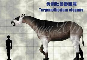 Turpanotherium elegans by sinammonite