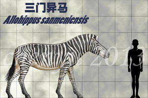 Allohippus sanmeniensis by sinammonite