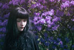 Violet Spring by yume-no-yukari-photo