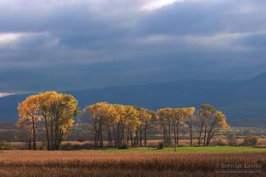 Autumn Roads II by Deformity