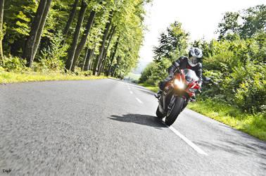 Honda CBR 600 RR PC40 by diddylux