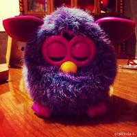 Furby by SnozberryFairy