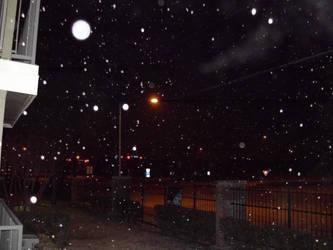 Feb 4th 2011 morning snow by SajjukKhar