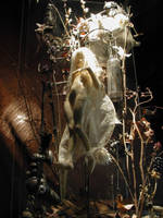 Fairy in flower and alchemy 03 by DensenManiya