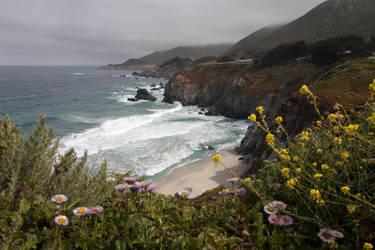 The Coast by Delacorr