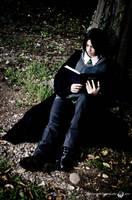 At Hogwarts' Garden - 03 by Vyles
