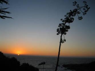 puesta de sol by smoked-cl