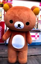 Cute Bear by yatoujisatsukix