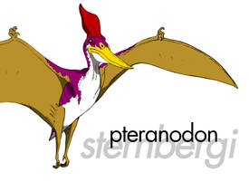 Pteranodon Sternbergi by March90
