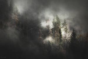 Decline of Darkness by Onodrim-Photography