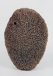 sponge 3 by dianabercovitz
