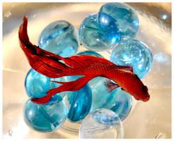 Red Fish by angelbabiau