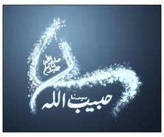 Islam Muhammad PBUH by ahsanpervaiz