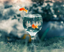 Fishy freeedom by ziggy90lisa