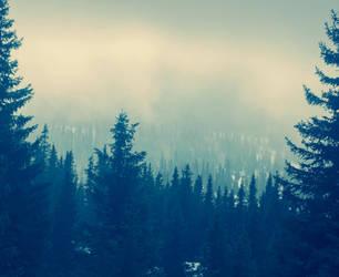 Fog by BlackDiamondOne