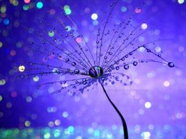 Sparkly drops by Bimmi1111
