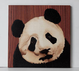 Cute Panda bear by Andulino