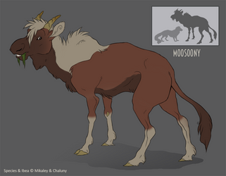 Species Sheet - The Moosoony by Chaluny