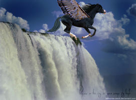 Pegasus deviantart by WhildWestHorses