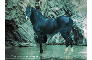 The water revives me by WhildWestHorses