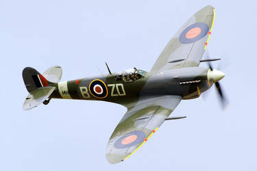 Spitfire by dog123456