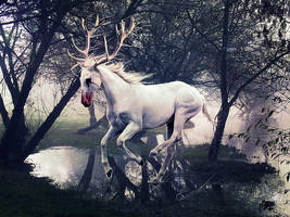 the white stag by Quammar