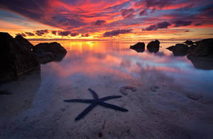 The Shallow Seas by michaelanderson