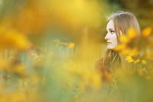 Sunflower by photofisken