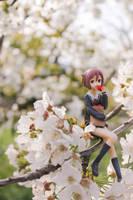 Cherry Blossom Beauty by Grishnakh666