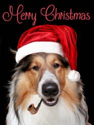 Merry Christmas by DragonDew