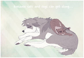 Cats 'n' Dogs by Soldjagurl
